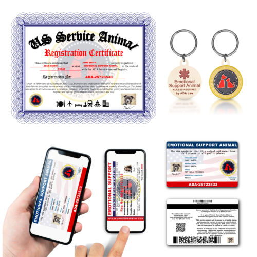 Silver Registration Package